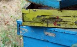 'Boxes' - Benkovski, Bulgaria, 2011