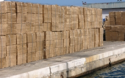 'Cardboard' - Sousse, Tunisia, 2008